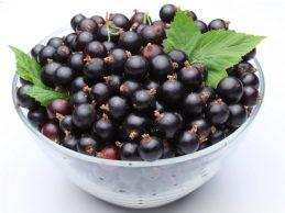 купить свежую черную смородину в москве оптом