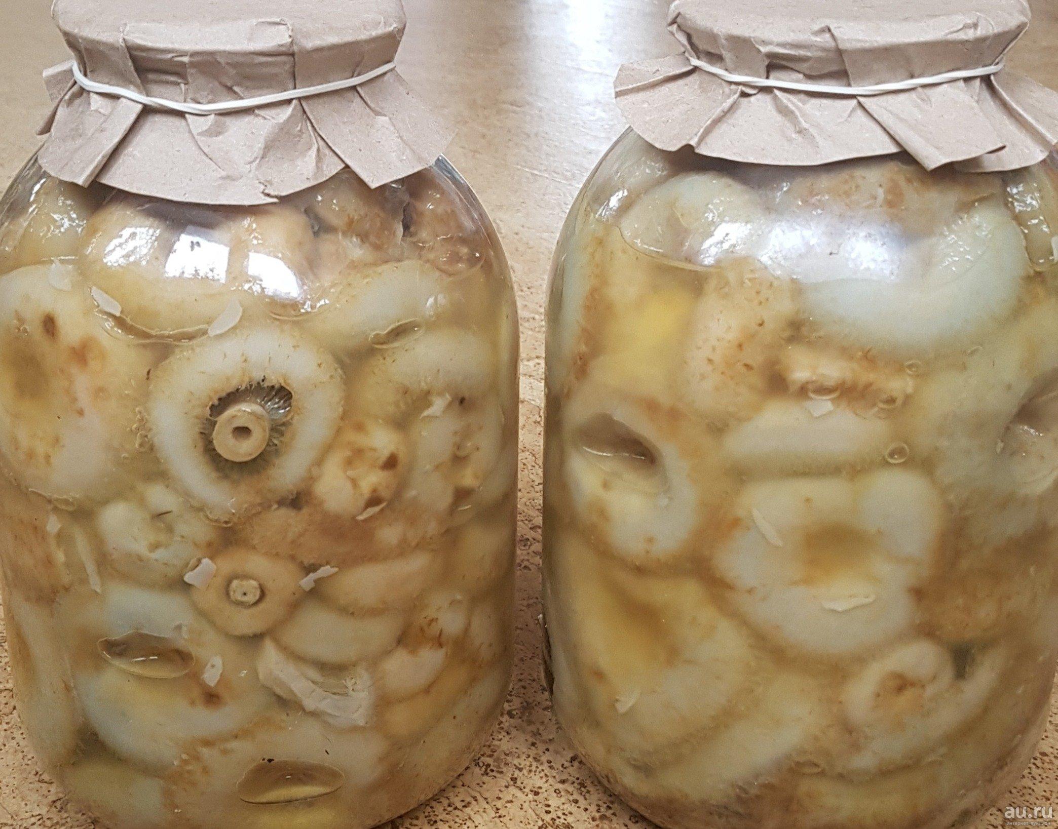 Соленые грузди мохнатые
